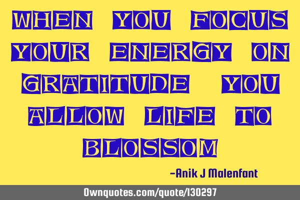 When you focus your energy on gratitude, you allow life to