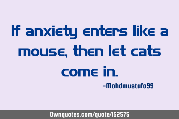 If anxiety enters like a mouse, then let cats come