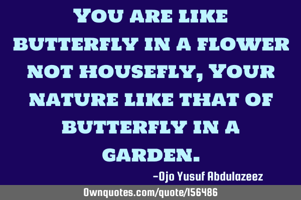 You are like butterfly in a flower not housefly,