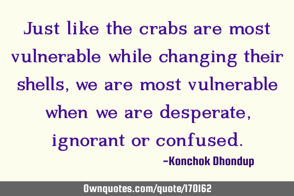 Just like the crabs are most vulnerable while changing their shells, we are most vulnerable when we