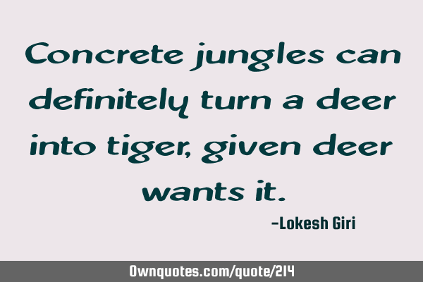 Concrete jungles can definitely turn a deer into tiger, given deer wants