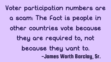 Voter participation numbers are a scam: The fact is people in other countries vote because they are