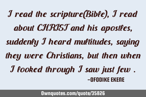I read the scripture(Bible) , I read about CHRIST and his apostles, suddenly I heard multitudes,